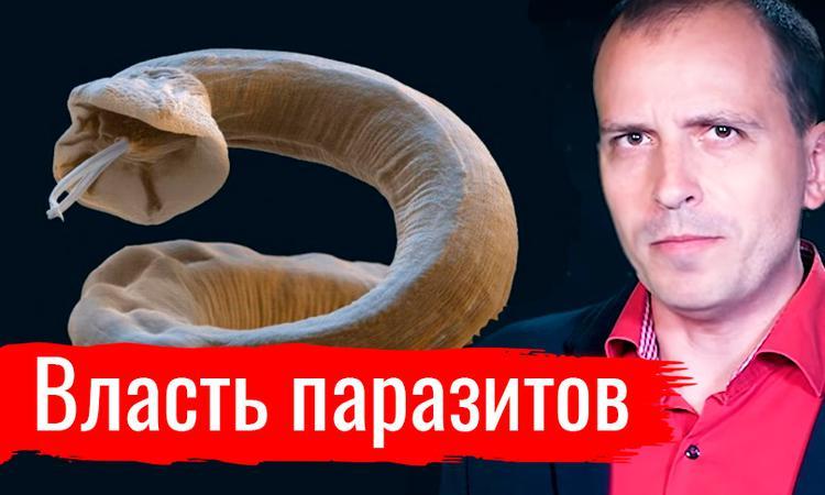 Власть паразитов. Константин Сёмин // АгитПроп 14.09.2019